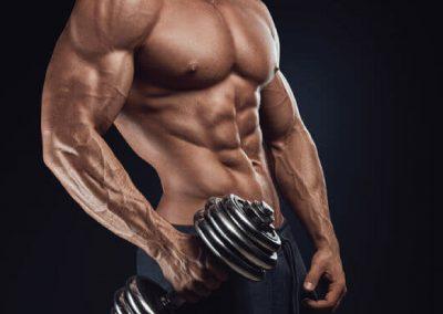 أنواع العضلات ببساطة