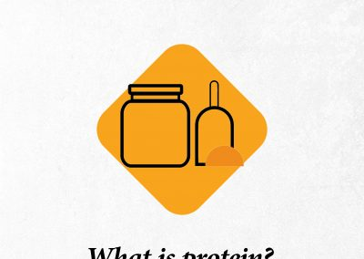 ما هو البروتين؟