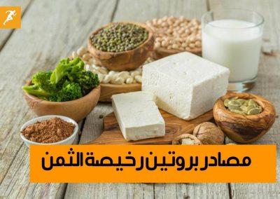 مصادر بروتين بتكلفة أقل